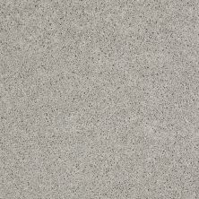 Shaw Floors Enduring Comfort I Sheer Silver 00500_E0341
