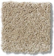 Shaw Floors Enduring Comfort II Clay Stone 00108_E0342