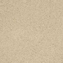 Shaw Floors Enduring Comfort II Parchment 00125_E0342