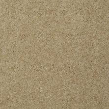 Shaw Floors Enduring Comfort III Taffeta 00107_E0343