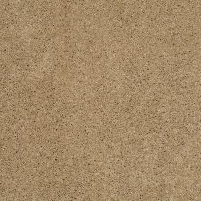 Shaw Floors Enduring Comfort III Cologne Mist 00128_E0343