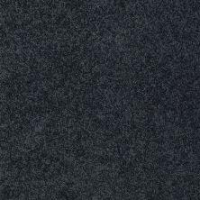 Shaw Floors Enduring Comfort III Patchwork 00401_E0343