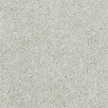 Shaw Floors Enduring Comfort III Crystal Blue 00402_E0343