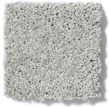 Shaw Floors Enduring Comfort III Sheer Silver 00500_E0343