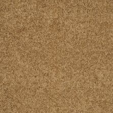 Shaw Floors Enduring Comfort III Country Wheat 00701_E0343