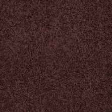 Shaw Floors Enduring Comfort III Plum Delight 00902_E0343