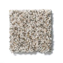 Shaw Floors Value Collections Power Buy 50 (b) First Light 00100_E0351