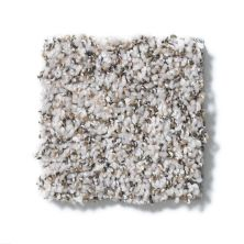 Shaw Floors Value Collections Power Buy 50 (b) Gentle Wind 00101_E0351