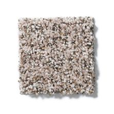 Shaw Floors Value Collections Power Buy 50 (b) Biscotti 00103_E0351