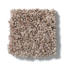 Shaw Floors Value Collections Power Buy 75 Sisal 00201_E0375