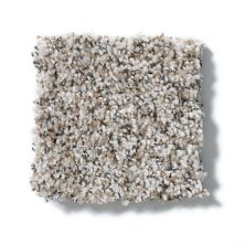 Shaw Floors Value Collections Power Buy 175 Sand Stone 00101_E0385