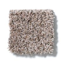 Shaw Floors Value Collections Power Buy 175 Dune 00107_E0385
