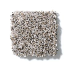 Shaw Floors Value Collections Power Buy 275 Sand Stone 00101_E0395