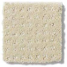 Shaw Floors Enduring Comfort Pattern Cashew 00102_E0404