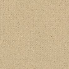 Shaw Floors Enduring Comfort Pattern French Linen 00103_E0404