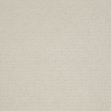 Shaw Floors Enduring Comfort Pattern Polar 00104_E0404