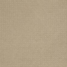 Shaw Floors Enduring Comfort Pattern Stucco 00129_E0404