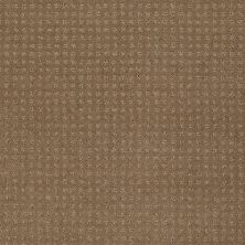 Shaw Floors Enduring Comfort Pattern Twig 00702_E0404