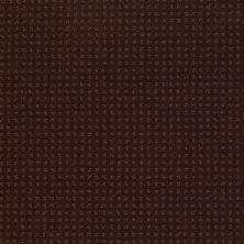 Shaw Floors Enduring Comfort Pattern Apple Butter 00728_E0404