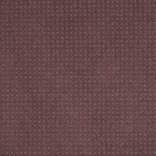 Shaw Floors Enduring Comfort Pattern Grape Fizz 00900_E0404