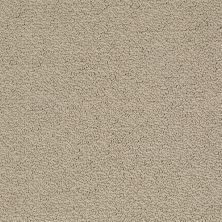 Shaw Floors Timeless Charm Loop Stucco 00129_E0405