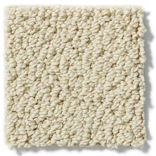 Shaw Floors Timeless Charm Loop Chamois 00220_E0405