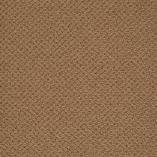 Shaw Floors Timeless Charm Loop English Toffee 00703_E0405