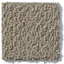 Shaw Floors Timeless Charm Loop Soft Clay*** 18751_E0405