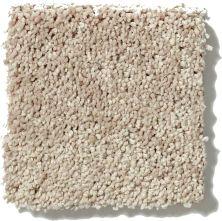 Shaw Floors Get Cozy III (s) Sand Swept 00104_E0472