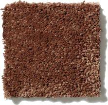Shaw Floors Get Cozy III (s) Baked Pecan 00600_E0472