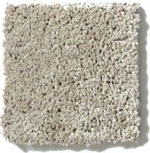 Shaw Floors Get Cozy III (s) Masonry 00700_E0472