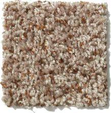 Shaw Floors Expect More (b) Bee Hive 00721_E0474