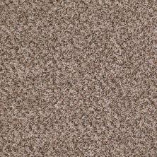 Shaw Floors Ride It Out (b) Linen 00112_E0476