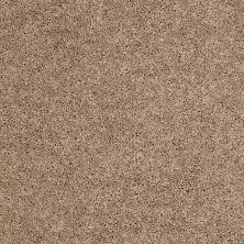 Shaw Floors Pay Attention Sahara Buff 00701_E0494