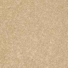 Shaw Floors Clearly Chic Bright Idea I New Morning 00201_E0504