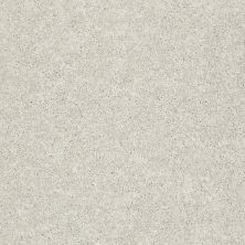 Shaw Floors Clearly Chic Bright Idea I Light Fog 00500_E0504