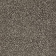 Shaw Floors Clearly Chic Bright Idea I Pewter Haze 00504_E0504