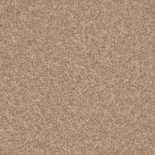 Shaw Floors Clearly Chic Bright Idea I Boardwalk 00702_E0504