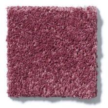 Shaw Floors Clearly Chic Bright Idea I Berry Kiss 00801_E0504