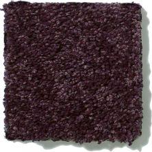 Shaw Floors Clearly Chic Bright Idea I Grape Wine 00901_E0504
