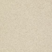 Shaw Floors Clearly Chic Bright Idea II Barefoot Beige 00105_E0505
