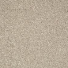 Shaw Floors Clearly Chic Bright Idea II Mushroom Cap 00106_E0505