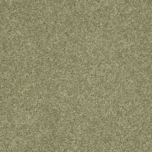 Shaw Floors Clearly Chic Bright Idea II Sweet Grass 00300_E0505