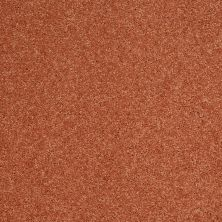 Shaw Floors Clearly Chic Bright Idea II Island Coral 00602_E0505