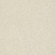 Shaw Floors Clearly Chic Bright Idea III Antique Pearl 00101_E0506