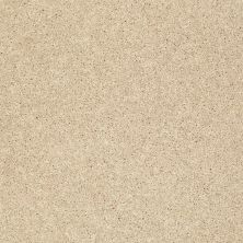 Shaw Floors Clearly Chic Bright Idea III Warm Vanilla 00107_E0506