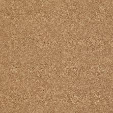 Shaw Floors Clearly Chic Bright Idea III Honey 00203_E0506