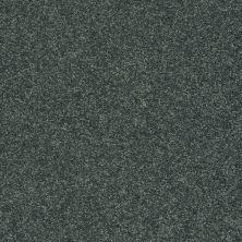 Shaw Floors Clearly Chic Bright Idea III Emerald Coast 00302_E0506