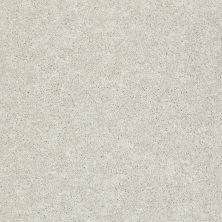 Shaw Floors Clearly Chic Bright Idea III Light Fog 00500_E0506