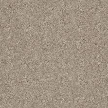 Shaw Floors Clearly Chic Bright Idea III Wild Mushroom 00700_E0506